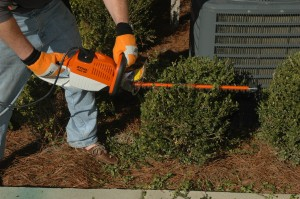 Stihl HSA-65 36 Volt Cordless Hedge Trimmer is Our Tool of the Day