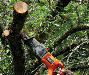 Cordless Reciprocating Saw Handy For Yard Work Extreme