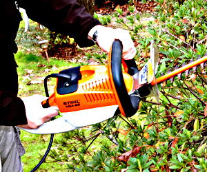 Stihl HSA 65 Cordless Hedge Trimmer Extended Use Review , a Cordless Hedge Trimmer for Commercial Use