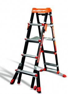 Right Ladder, Right Job