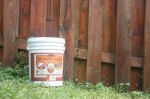Fence Staining Made Easy with Ready Seal