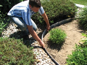 DIY Landscape Edging
