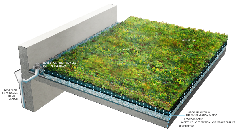 Create A Green Roof Extreme How To Blog